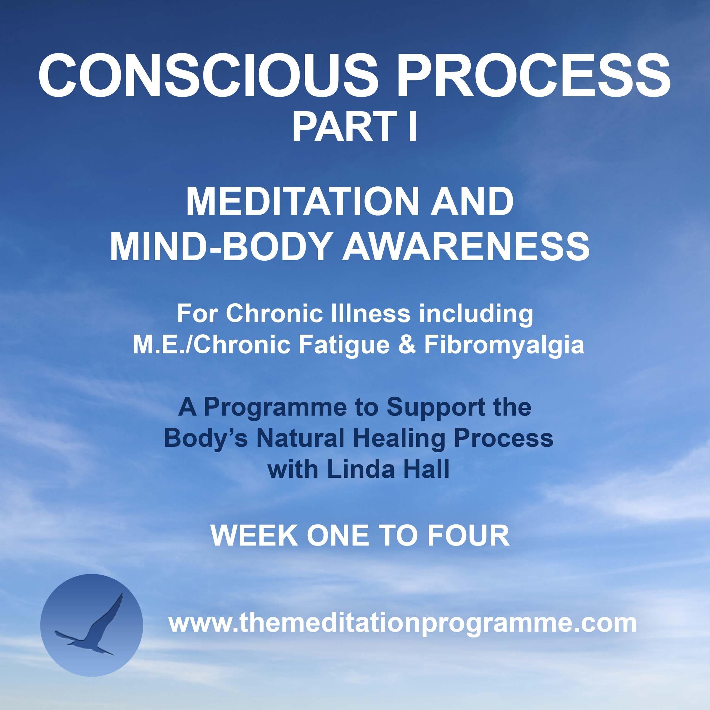 Conscious-Process-Part-1