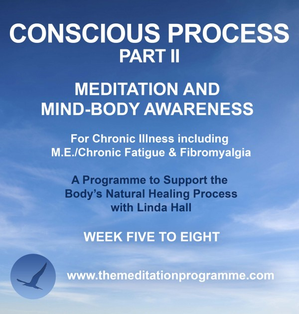 Conscious Process Part 2 – Support Programme for Chronic Illness