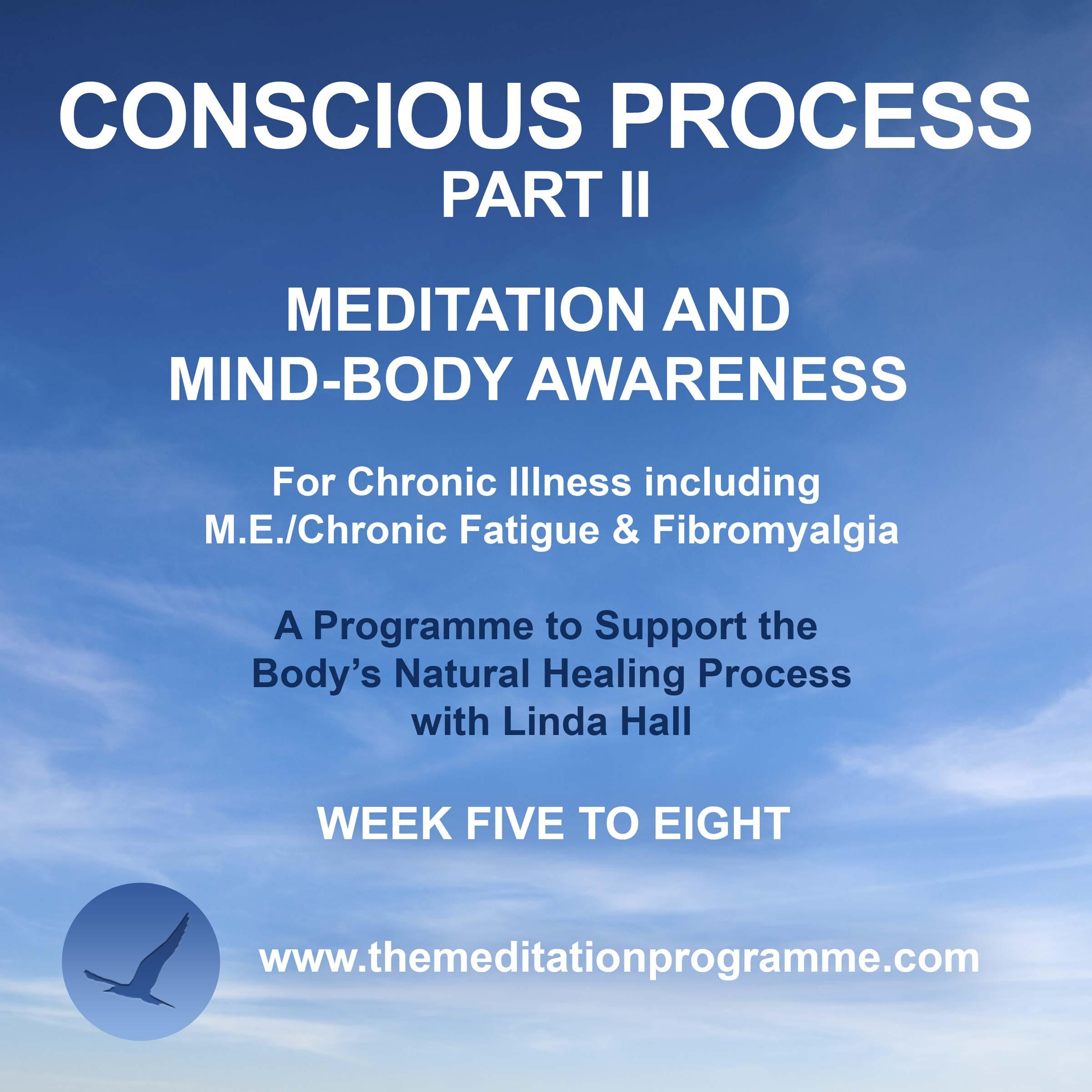 Conscious-Process-Part-2
